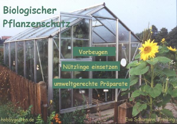biologischer pflanzenschutz so kann man auf chemie verzichten. Black Bedroom Furniture Sets. Home Design Ideas